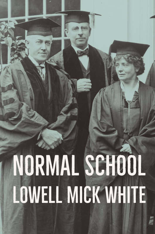 Normal School, Lowell Mick White, academia, higher education, reading, novel, noir